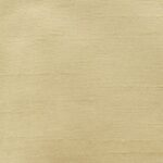 1027 Inola Seashell